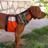 Предпазен нагръдник за ловни кучета (къс вариант)