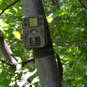 24MP мини ловна камера с IR диоди 2